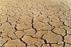 Высушенная почва Стоковые Фото