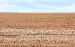 Высушенная почва Стоковая Фотография RF