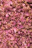 Высушенная предпосылка вишневых цветов Стоковая Фотография