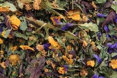 Высушенная предпосылка травяного чая Стоковое фото RF