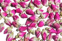 Высушенная предпосылка rosebuds Стоковые Изображения