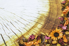 Высушенная рамка цветка на деревянной предпосылке сбор винограда текстуры цветастой дома детали внешней старый Стоковое фото RF