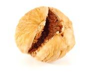 высушенная смоква Стоковая Фотография