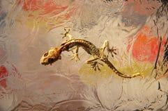 высушенная стеклянная ящерица Стоковая Фотография RF