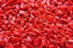Высушенная ягода Goji Стоковые Фотографии RF