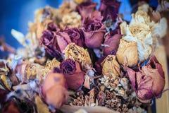 Высушенная wedding предпосылка букета цветка роз поднимающее вверх букета близкое Стоковая Фотография