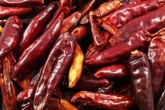 Высушенное красное Chilis Стоковые Изображения