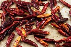 Высушенное красное Chilis Стоковая Фотография