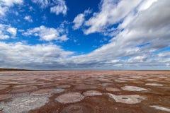 Высушенное озеро соли около вулканов грязи стоковая фотография rf