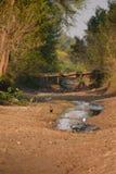 Высушенное озеро Стоковые Изображения RF