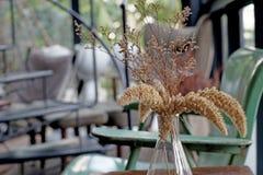 Высушенное украшение цветков в живущей комнате Стоковые Изображения