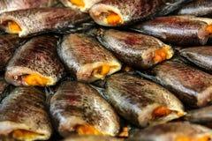 Высушенное Fish05 Стоковое Изображение RF