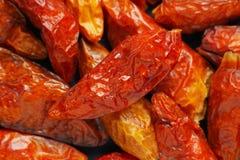 Высушенное peperoncini chili Стоковое Изображение