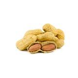 Высушенные арахисы внутри на белизне Стоковые Изображения RF