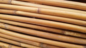 Высушенные бамбуковые тросточки Стоковое фото RF