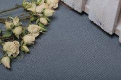 Высушенные бежевые розы На фоне текстуры серой ткани грубой Рядом деревянная коробка, покрашенная в белизне стоковые фото
