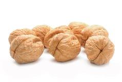 высушенные грецкие орехи Стоковые Изображения
