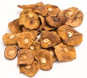 Высушенные грибы изолированные на белизне Стоковое Фото