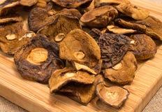 Высушенные грибы на холсте Стоковая Фотография RF