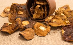 Высушенные грибы на холсте Стоковые Фото