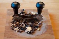 высушенные грибы Стоковые Фотографии RF