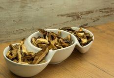 высушенные грибы Стоковые Фото