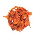 Высушенные лепестки лилии Стоковые Фотографии RF