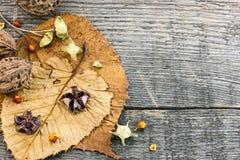 Высушенные заводы и цветки, гайки, упаденные листья на деревянном backgrou Стоковое фото RF