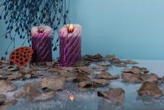 Высушенные листья в снеге с 2 свечами на голубой предпосылке стоковые изображения