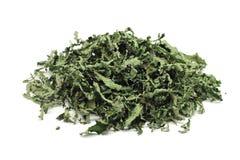 Высушенные листья пипермента Стоковые Изображения