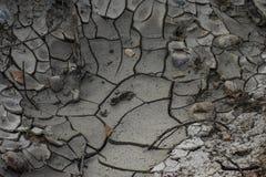 Высушенные и треснутые земля/грязь и печать стоковая фотография