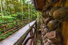 Высушенные кокосы на стене перед мостом Sanya Li и Стоковое фото RF