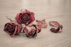 Высушенные красные розы в винтажном стиле стоковое фото rf