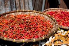 Высушенные красные chilies Стоковое фото RF