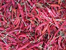 Высушенные накаленные докрасна Chilies Стоковая Фотография