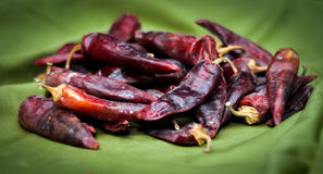 Высушенные накаленные докрасна перцы chili лежат в куче, glitering с различными тенями красного цвета Стоковая Фотография