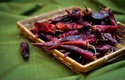 Высушенные накаленные докрасна перцы chili лежат в куче, glitering с различными тенями красного цвета Стоковое Изображение RF