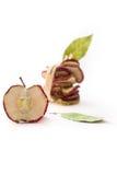 Высушенные обломоки яблока Стоковое Фото
