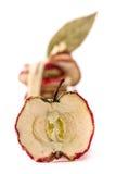 Высушенные обломоки яблока Стоковое фото RF