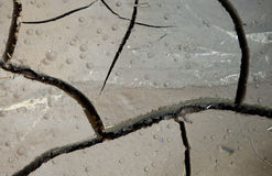 высушенные падения зарывают длиной идя дождь воду Стоковая Фотография RF
