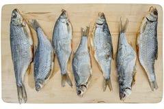 Высушенные посоленные рыбы плотвы Стоковое Изображение