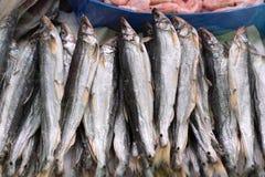Высушенные посоленные рыбы снетка на счетчике на рыбном базаре Стоковые Фото