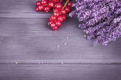 Высушенные пуки лаванды и предпосылка redcurrantson деревянная Sele Стоковые Изображения