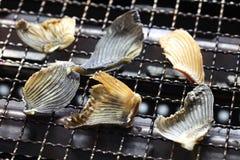Высушенные ребра blowfish для ради Hirezake японского горячего выпивают стоковая фотография