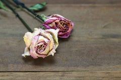 Высушенные розовые розы на деревянной предпосылке с космосом экземпляра стоковая фотография