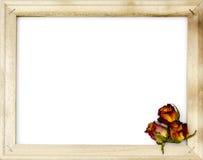 Высушенные розы в старой картинной рамке Стоковые Изображения
