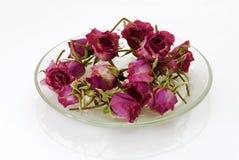высушенные розы Стоковое фото RF