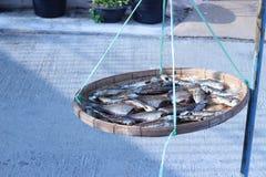Высушенные рыбы в корзине outdoors Стоковые Фото