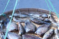 Высушенные рыбы в корзине outdoors Стоковое Изображение