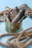 Высушенные рыбы в олове на голубых досках Стоковое Изображение RF